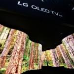 LG-OLED-Canyon_2
