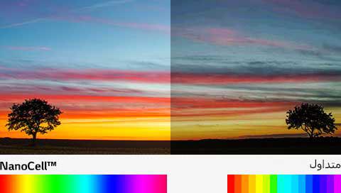 03_SJ95_A_Billion-rich-colors-(sub)_V
