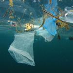 World-Environment-Day-02